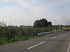 Img_4407