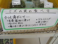Img_7813pe