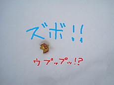 Img_9011pe