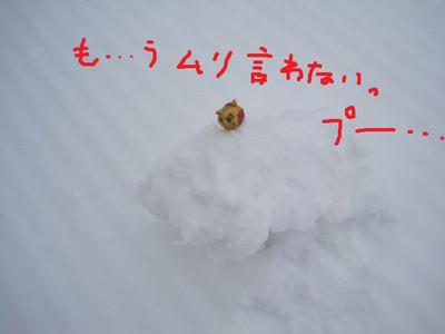 Img_9018pe_2