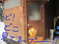 Img_9071pe